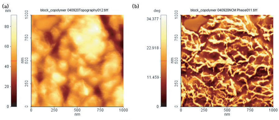 spm-phase-imaging-detection-microscopy-pdm-afm-f2